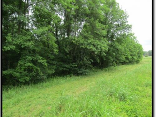 10 Acres In Chickasaw County : Houston : Chickasaw County : Mississippi