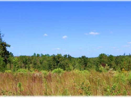 79 Acres In Attala County : Kosciusko : Attala County : Mississippi