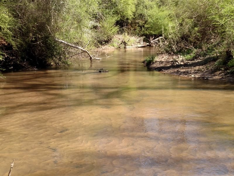 185 Ac With Huge Creek : Indian Springs : Butts County : Georgia
