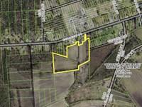 Great Investment Property : Warsaw : Duplin County : North Carolina
