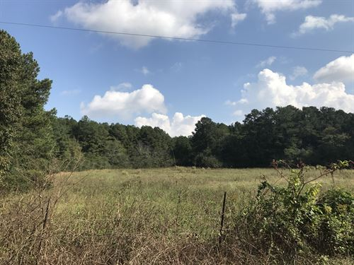 38.63 +/- Acre Tract, Bartow County : Adairsville : Bartow County : Georgia