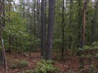 Big Buck Tract : Sparta : Hancock County : Georgia