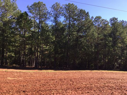 43-027 Prather -- 433 Acres : Opelika : Lee County : Alabama