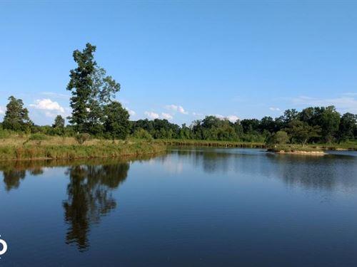 Dr. Truitt Drive : Bearcreek : Chatham County : North Carolina
