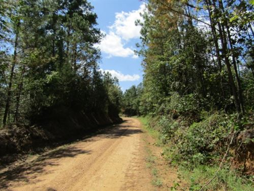 38 Acres In Holmes County : Midway : Holmes County : Mississippi