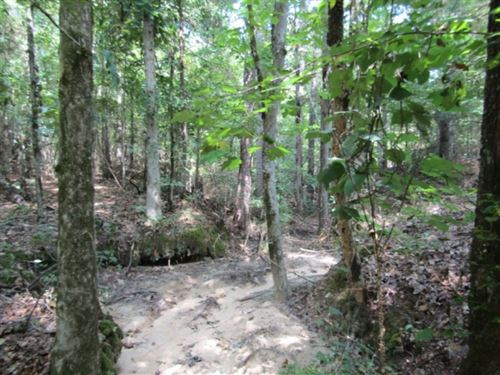 15 Acres In Holmes County : Durant : Holmes County : Mississippi