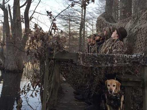 61 Acres Duck Hunters Dream, : Lambert : Quitman County : Mississippi