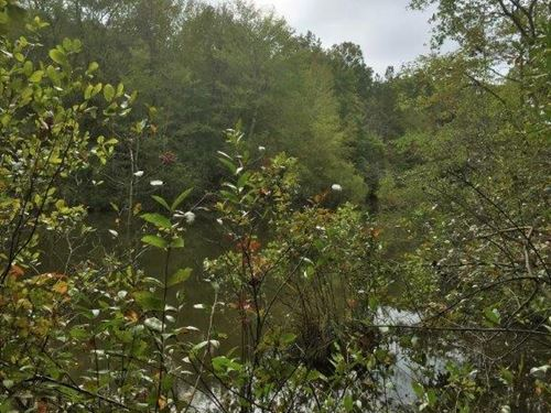 Mill Pond Tract : Sparta : Hancock County : Georgia
