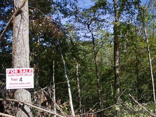 Black Oak Ranch Tract 4 : Livingston : Rockcastle County : Kentucky