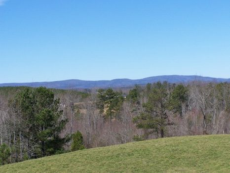 60+/- Acres Mt. View Pastureland : Barfield : Clay County : Alabama