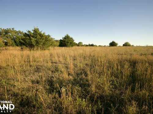 Lone Star Cattle & Country Living : Lawrence : Douglas County : Kansas