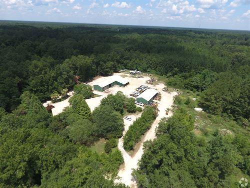Nearly 100 Ac Of Multi-Purpose Land : Ridgeville : Dorchester County : South Carolina