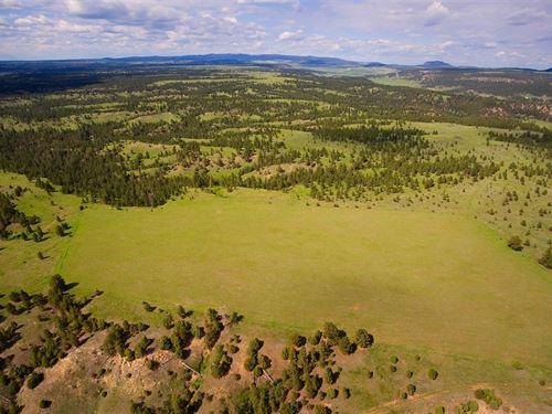 Kara Divide South : Sundance : Crook County : Wyoming