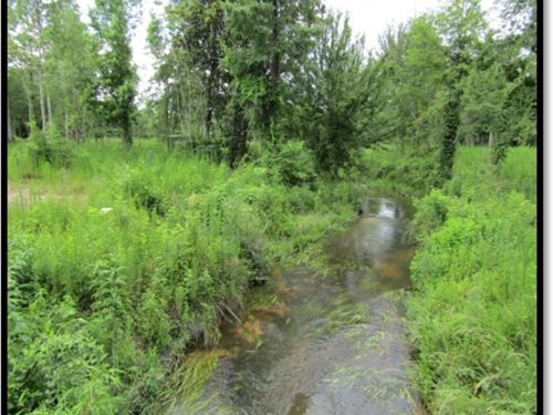 80 Acres In Simpson County In Mende : Magee : Simpson County : Mississippi