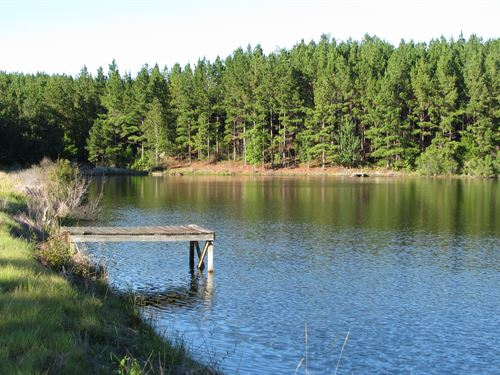180 Acres With 15 Ac Lake : Camden : Wilcox County : Alabama
