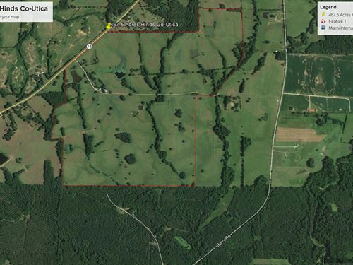 Cattle Ranch Ready : Utica : Hinds County : Mississippi