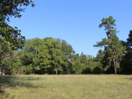 Arnsworth 42 : Montgomery : Texas