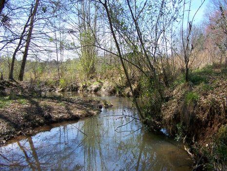 94+/- Acres Beautiful Pastureland : Delta : Clay County : Alabama