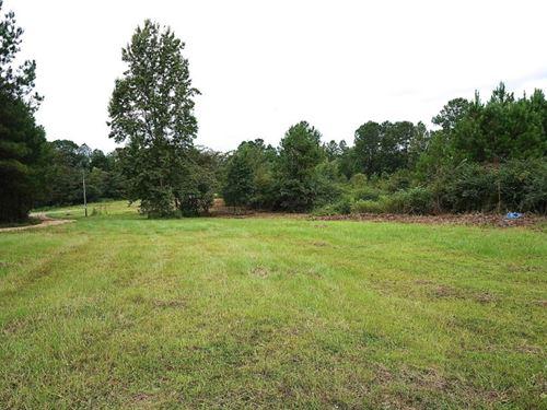 Home On 13 Acres In Ovett, Ms : Ovett : Jones County : Mississippi