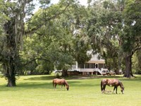 Beautiful Plantation Home With Land : Quitman : Brooks County : Georgia