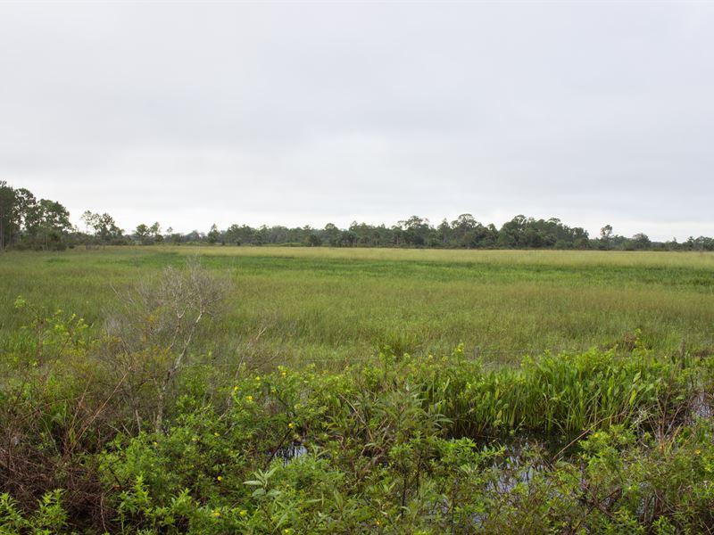 The Durando Yeehaw Ranch : Okeechobee : Okeechobee County : Florida