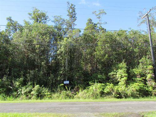2 Acres, Close To Ocean, Financing : Mountain View : Hawaii County : Hawaii