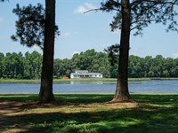 Reduced, 187 Acres of Farm And Re : Fairmont : Robeson County : North Carolina