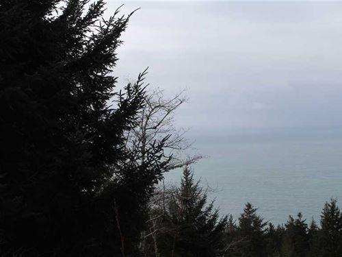 Cape Sebastian Ocean View : Gold Beach : Curry County : Oregon