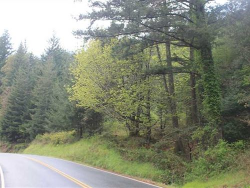 Lot 16 North Bank Rd : Gold Beach : Curry County : Oregon