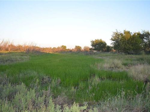 140 Acres Outside of Megargel, TX : Megargel : Archer County : Texas
