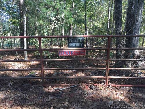 Awesome Hunting Tract With Primiti : West : Carroll County : Mississippi
