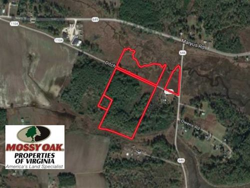 Reduced, 21 Acres of Timber Land : Hayes : Gloucester County : Virginia