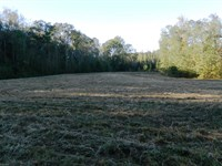 Hunting Retreat Ready And Waiting : Lexington : Oglethorpe County : Georgia