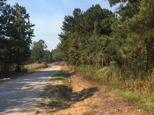 Timber Investment Tract : Canton : Madison County : Mississippi