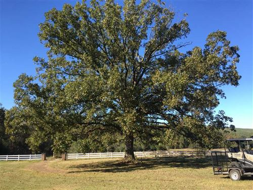 129 Acres And Home in Perry County : Casa : Perry County : Arkansas
