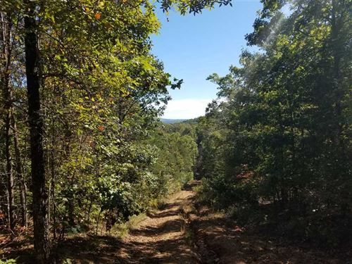 169+ Acres in Burke County : Connelly Springs : Burke County : North Carolina