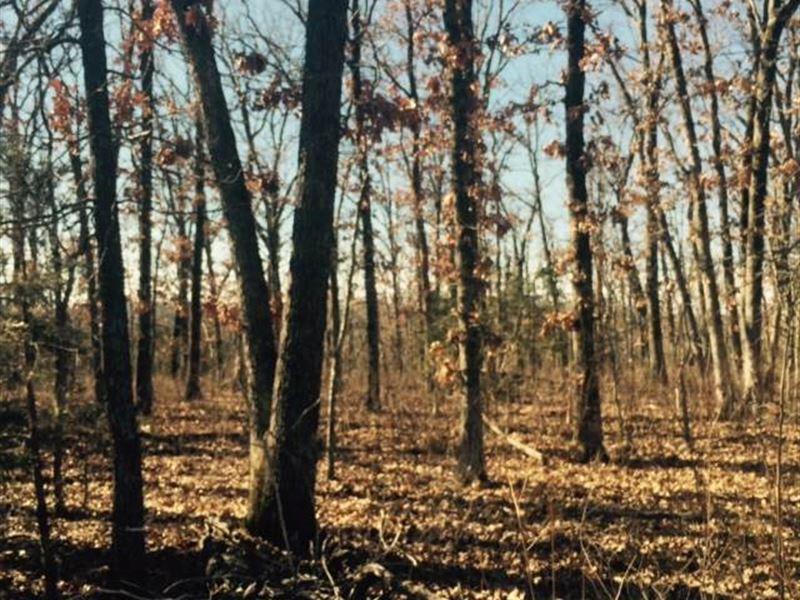 Reduced, Great 80 Acres in Benton : Warsaw : Benton County : Missouri