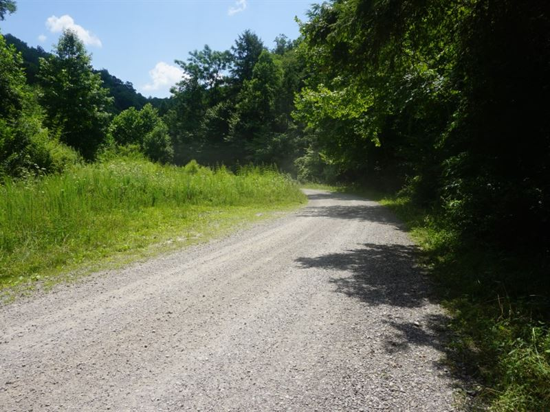 Great Hunting Land With Minerals : Dixie : Clay County : West Virginia