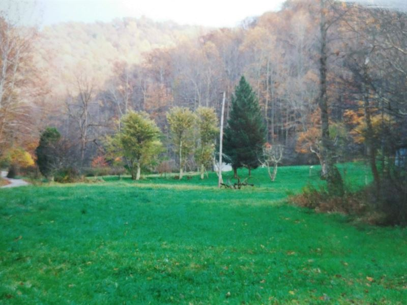 Private Minerals & Royalties : Pond Gap : Kanawha County : West Virginia