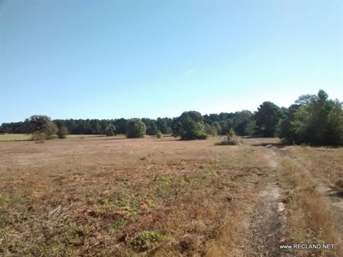 60 Ac - Tract For Home Site, Recrea : Garrison : Nacogdoches County : Texas
