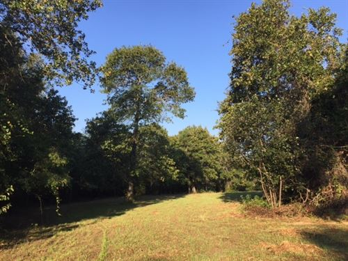 Hunting Tract W/ Cabin : Butler : Taylor County : Georgia