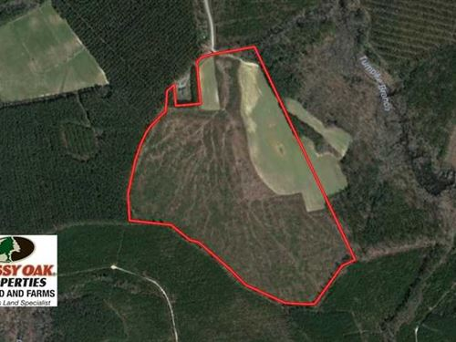 Under Contract, 90.5 Acres of Far : Ahoskie : Hertford County : North Carolina