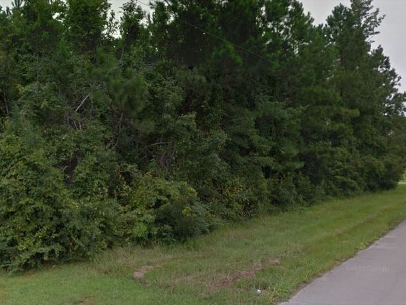 Craven County, Nc $35,000 Neg : Land for Sale : New Bern : Craven