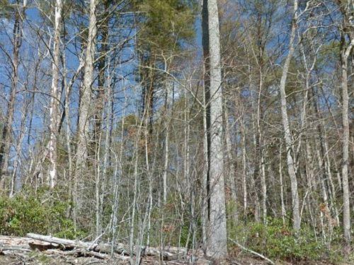 Henderson County, Nc $98,000 Neg : Zirconia : Henderson County : North Carolina