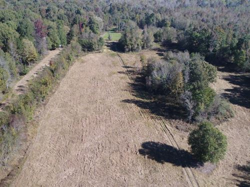 Riverview Preserve Estate : Bishopville : Lee County : South Carolina