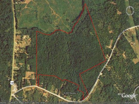 Great Hunting/Timber Tract : Eatonton : Jones County : Georgia