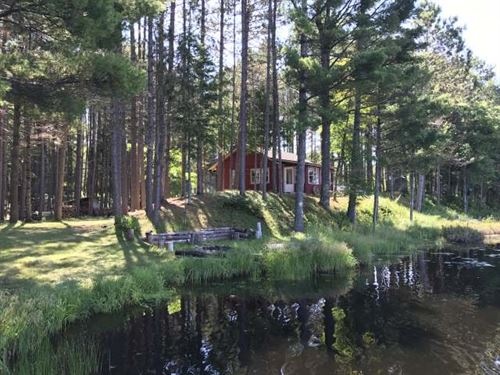 Complete Privacy & 800' Frontage : Boulder Junction : Vilas County : Wisconsin