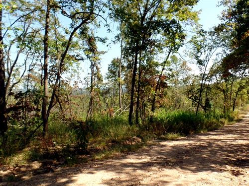 12.5 Acres, Clearing, Electric : Manes : Wright County : Missouri