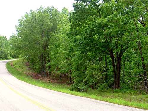 25 Acres, Shed, Clearing, Trails : Elk Creek : Texas County : Missouri