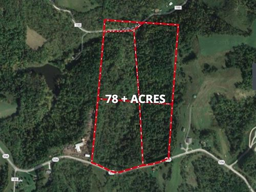 Absolute Monroe Co Recreational Auc : Beallsville : Monroe County : Ohio